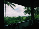 Ubud from The Elephant